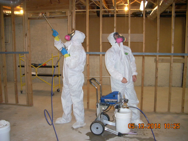 Remediation of Mold