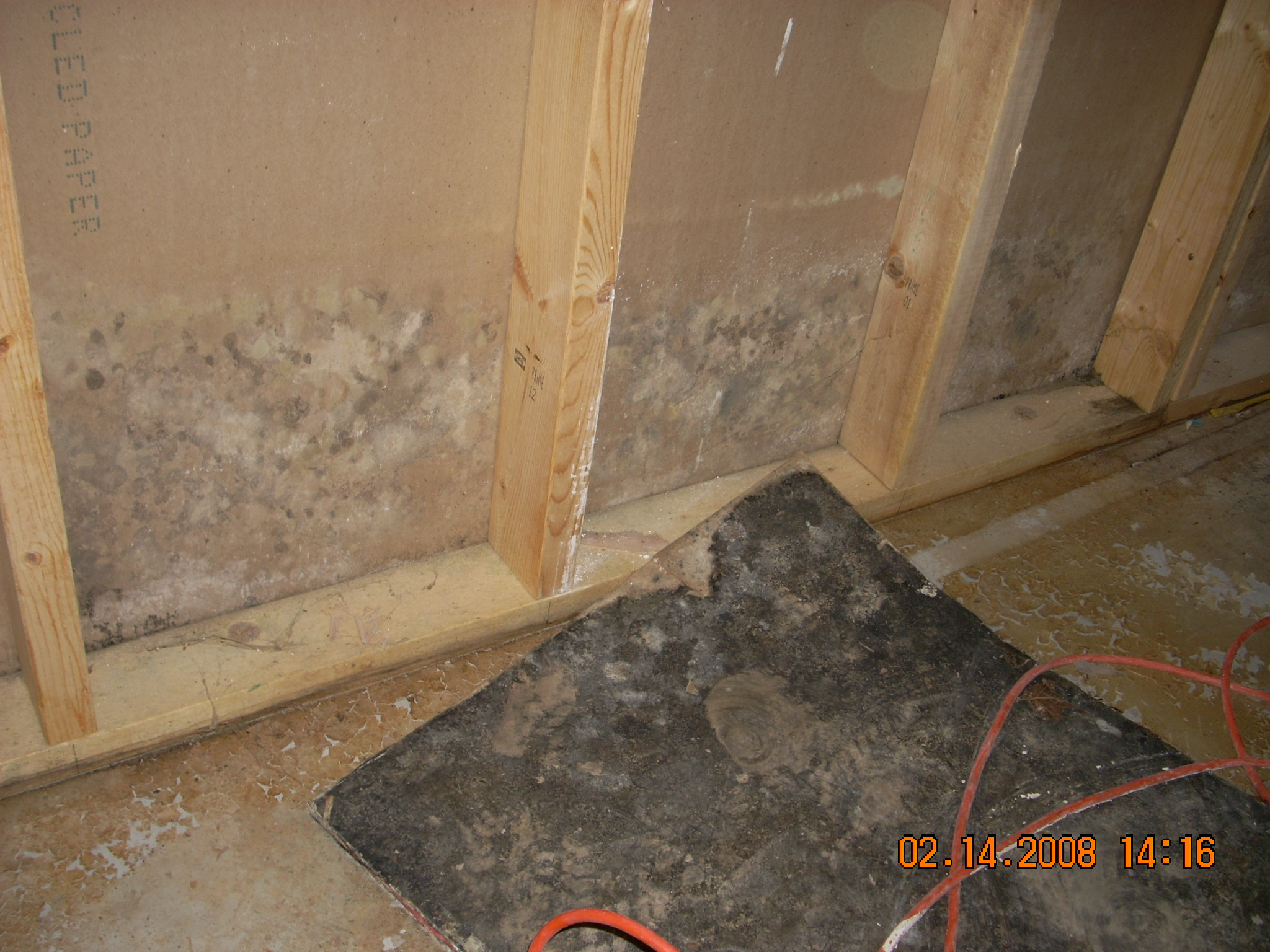 Flooding causing mold
