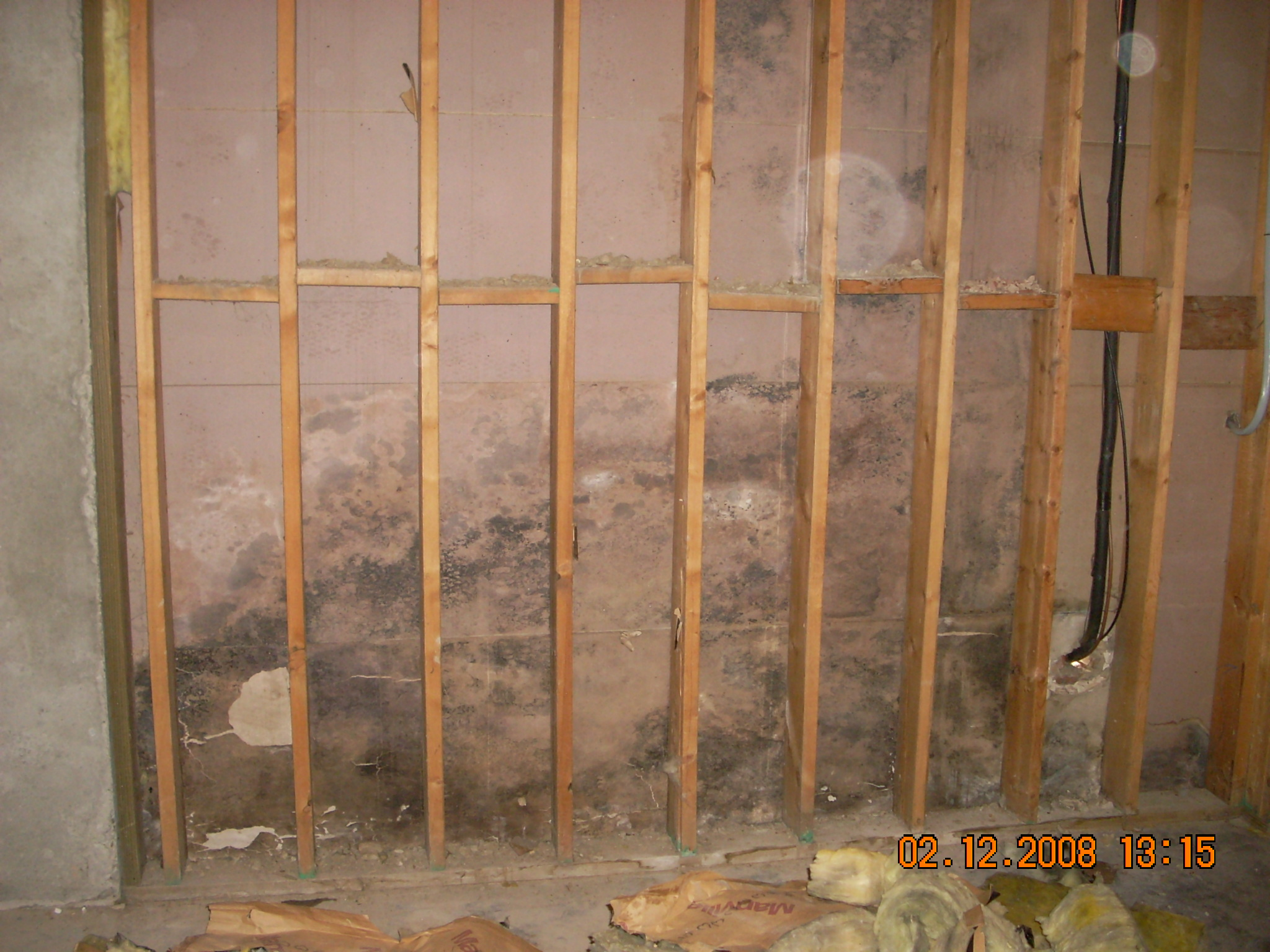 Exterior moisture and mold